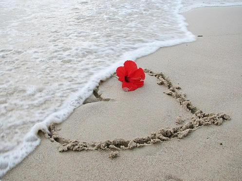 Declaratie de dragoste primavara