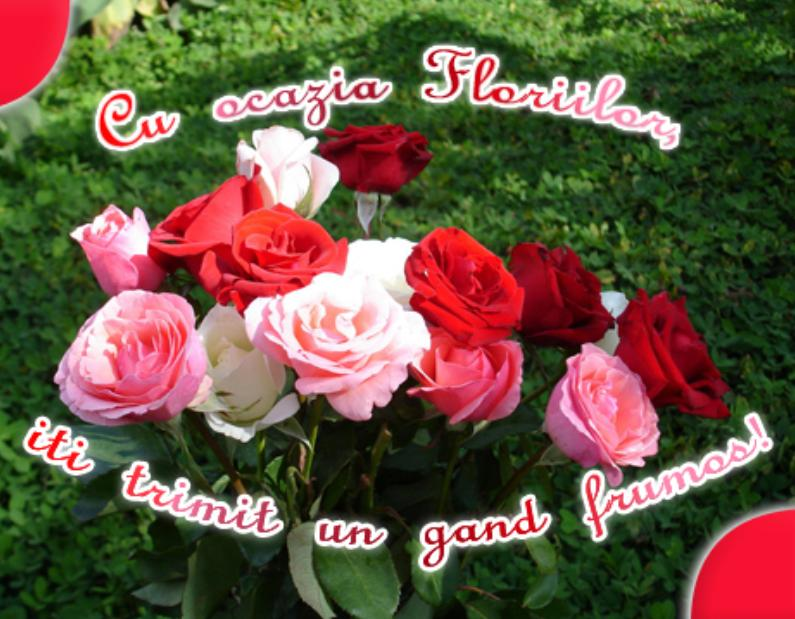 Sms-uri de Florii – Mesaje de Florii – Urari de Florii