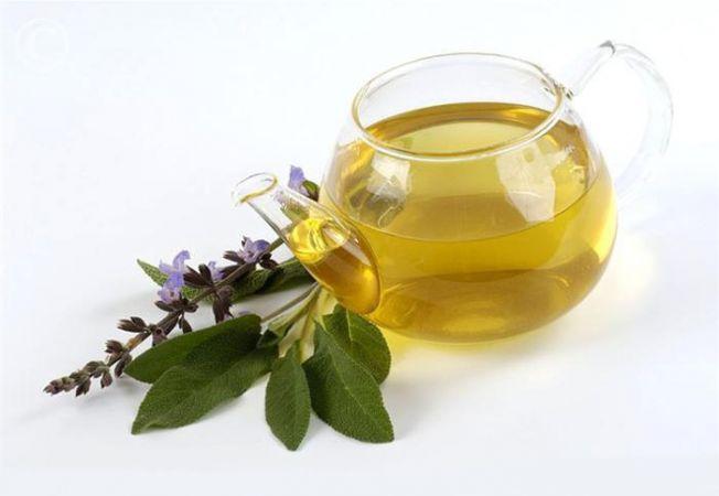 Ceaiul de salvie – beneficii miraculoase pentru sănătate