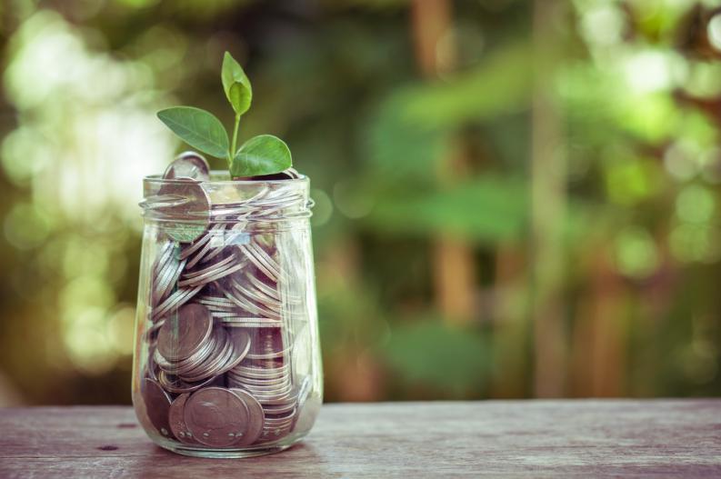 Cum sa atragi norocul si prosperitatea in casa ta – secrete Feng Shui